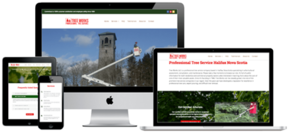 st. john's website design